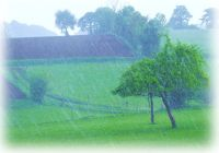 La pluie entre Pessa'h et Shavouot